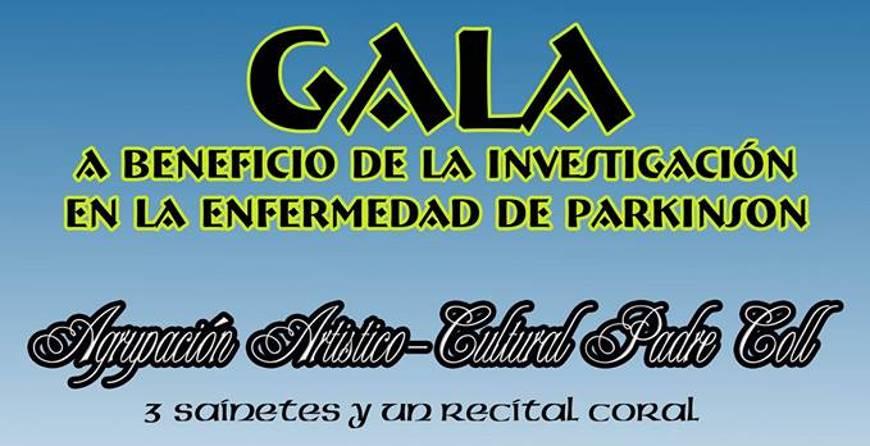 Gala Beneficio Parkinson